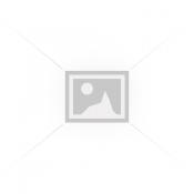 Dažų purkštuvai (1)